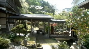 鮫島旅館 内庭